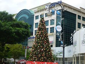 Photo: Na ulici Orchard nás zasahuje vánoční atmosféra