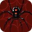 Spider Solitaire - Classic Card Games APK