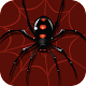 Spider Solitaire - Classic Card Games (game)