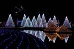 宜蘭打卡新亮點!20米耶誕主燈光影秀超好拍