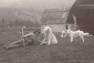 Photo: r. 1950