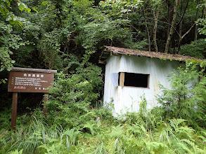 ここは角井県営林