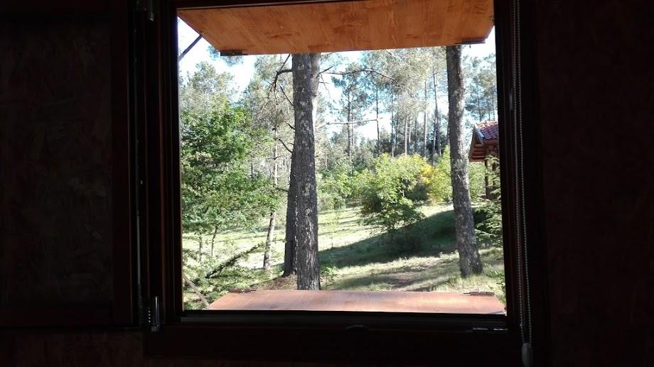 Foto Parque Pena Aventura 18