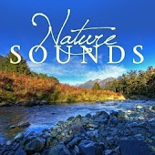 Nature Sounds Relax and Sleep Free with Hypnosis