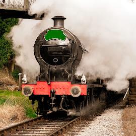 Steam Power by Darrell Evans - Transportation Trains ( wheels, old, transport, outdoor, pullman, engine, locomotive, steam, bridge, railway, track, no people, train )