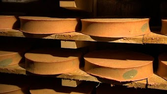Savoie and Franche Comte - Cheeses Of The Alps