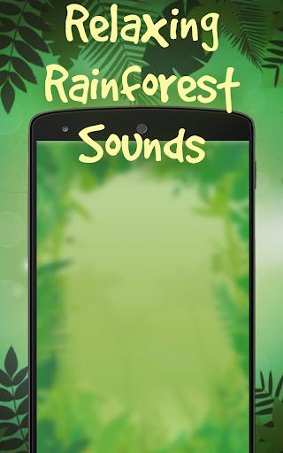 雨林的聲音