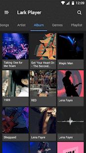 Lark Player Theme - Night - náhled