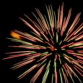 by Jeff Brown - Public Holidays July 4th (  )