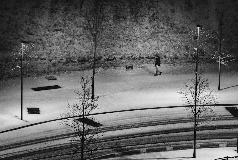 Nevoso aere di Paolo Zanoni