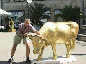 Photo: Cowparade - Budapest 2006 július