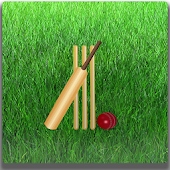 Easy Cricket Scoring