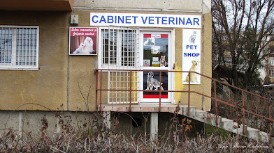 Photo: 2013.02.05 - Cabinet Veterinar