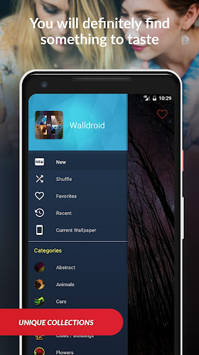 Wallpapers HD (Backgrounds) by Walldroid screenshot 1
