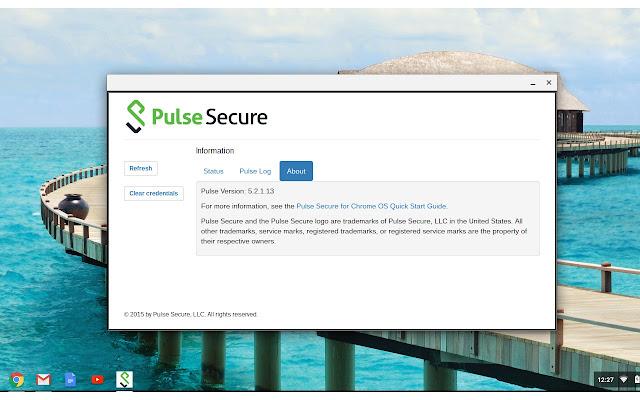 Pulse Secure - Chrome Web Store