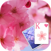 Solitaire Pink Blossom Theme  Icon