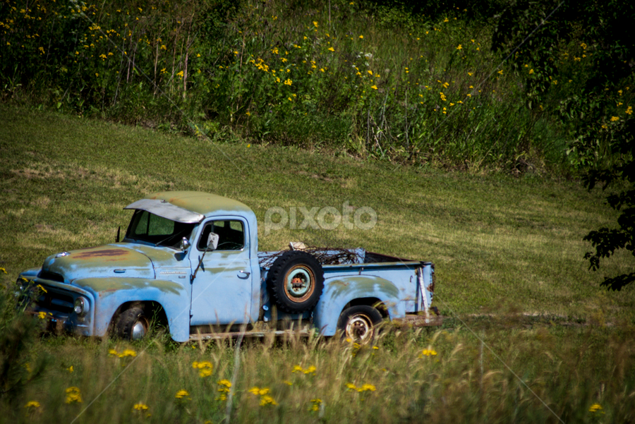 Leave Me Be by Melissa S. Hunt - Artistic Objects Antiques ( trucks, old, farm trucks, transportation, objects, antiques )