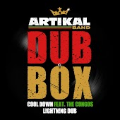 Artikal Band Dub Box