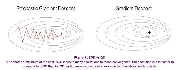 sgd vs gd   gradient-based optimizers