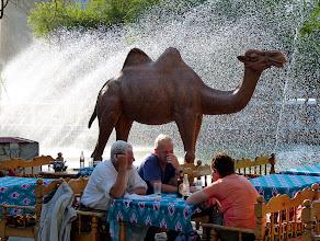 Photo: Teestuben und Restaurants: nicht nur bei Einheimischen beliebt