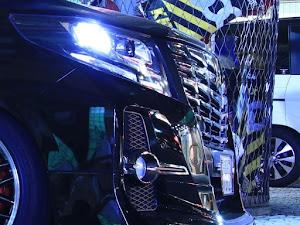 アルファード 30系 H29年式S・Aタイプブラックのカスタム事例画像 takebou😱ビビリーズ😱さんの2019年08月15日18:15の投稿