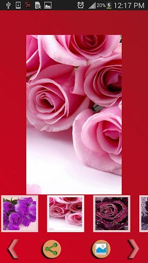 【免費生活App】玫瑰壁紙-APP點子