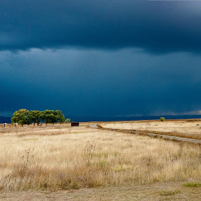 by John LeBlanc - Landscapes Prairies, Meadows & Fields ( clouds, deserted, panorama, new mexico )