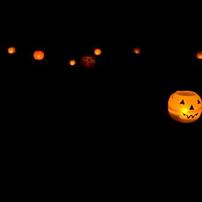 Lantern Lane by Dan Allard - Public Holidays Halloween ( lights, pumpkin, jack o'lantern, pumpkins, candles, pwcpumpkins, halloween )
