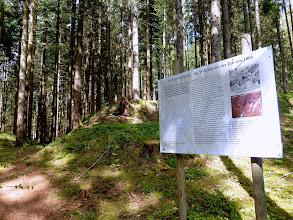 Photo: Info Pürglitzschanze
