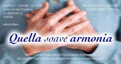 Foto: Presentazione del metodo: Quella soave armonia, del dott. Marco Bertali. 11 giugno 2013 a Gorizia.