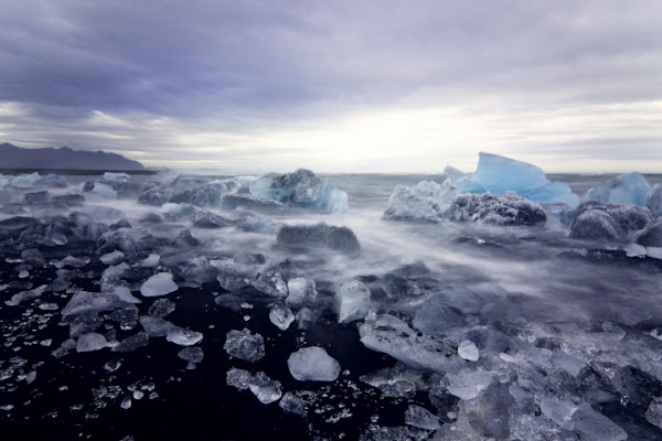 Icebergs in the sea /  Jökulsárlón di Giulia Ahdieh