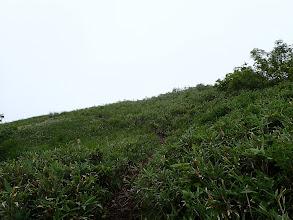 傾斜が緩み草原に到着