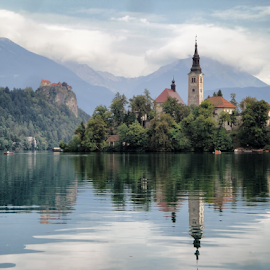 Bled (Slovenia) by Gianluca Presto - Buildings & Architecture Public & Historical ( water reflection, slovenia, reflection, waterscape, church, bled, lake, water, landscape, architecture )