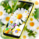 Daisies HQ Live Wallpaper (app)