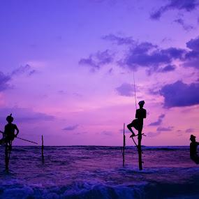 Traditional Stick-Fishermen at Sunset by Suranga Weeratunga - Landscapes Sunsets & Sunrises ( srilanka, profession, indian, sea, ocean, beach, sri lanka, travel, landscape, people, asian, fishing, fisherman )