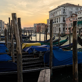 Sunset over the Canal Grande, Venice by Nico Sinselmeijer - City,  Street & Park  Street Scenes ( work, gondola, sunset, venice, italy, ponte dell' accademia, canal grande )
