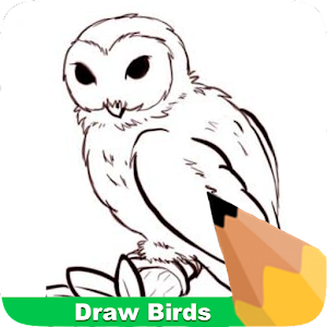 Tải Game How To Draw Birds