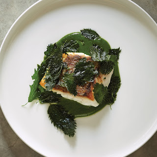 Seared Snapper with Nettle Sauce