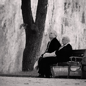 When two people - a whole by Valentyn Kolesnyk - People Couples ( two, tree, park, meditation, steam )