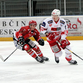 by Igor Martinšek - Sports & Fitness Ice hockey