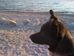 Photo: Malia at Salton Sea, CA