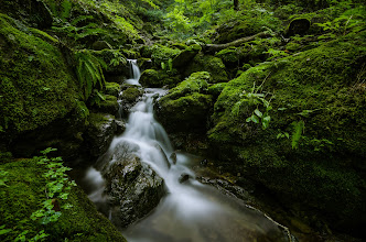 Photo: Living Water of Mitake  This is probably my favorite shots from my recent hike around Mt. Mitake, taken in the Rock Garden area of the hike. By the time I got to this location, I had waded barefoot in water, dropped my hat in a stream, straddled slippery rocks and logs, and various other photographic acrobatics. To be able to rest along this quiet running water, and sit down easily to shoot it, was a real relief. I was also captivated by how green everything around it was. It's amazing how just a little bit of water can give life to everything around it, even the rocks through which it flows.  Blog post: http://lestaylorphoto.com/mt-mitake-rock-garden/  #japan #water #longexposure #nature