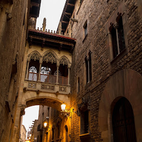 Bridge of sighs in Barcelona by Oleksii Liebiediev - City,  Street & Park  Historic Districts ( arc, old city, architecture, bridge, barcelona, historic )