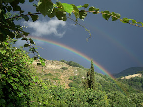 Photo: Paysage vu de la terrasse Sud