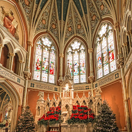 Altar by Richard Michael Lingo - Buildings & Architecture Places of Worship ( georgia, buildings, church, savannah, architecture )
