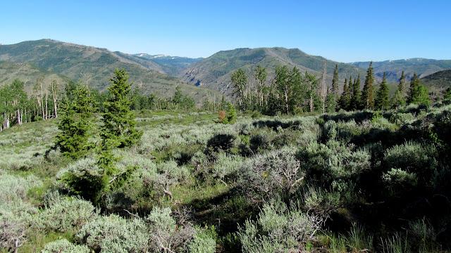 View north toward upper Huntington Canyon