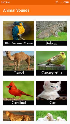 Animal sounds 1.01.0 screenshots 2