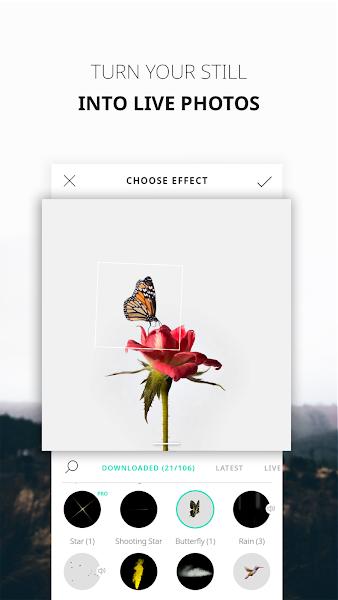 Download APK: VIMAGE – cinemagraph animator & live photo editor v2.1.0.0 [Premium]