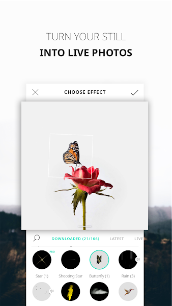 Download APK: VIMAGE – cinemagraph animator & live photo editor v2.0.6.0 [Premium]