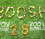 Boosh 28 : Zoolake Bowls